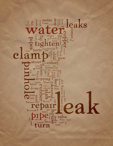 Top Household Leak to Save Water From